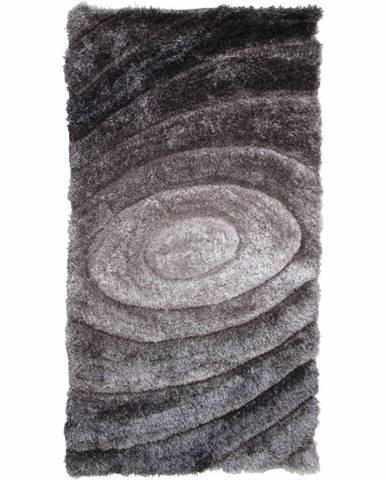 Vanja koberec 200x300 cm sivá