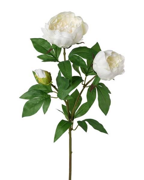 Sencor Umelá pivonka biela, 70 cm