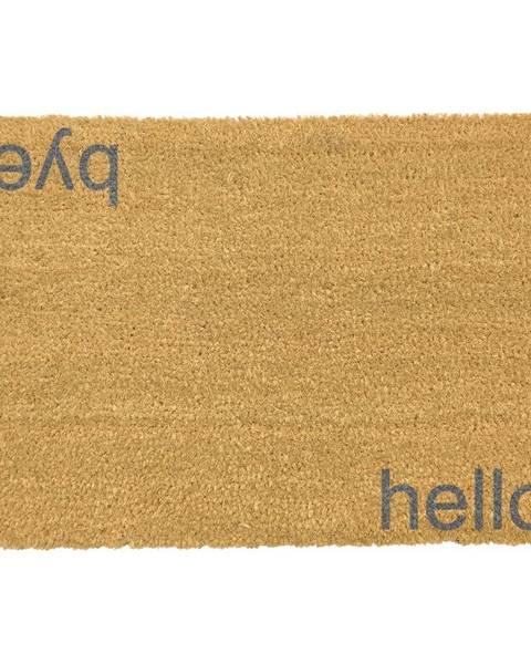 Artsy Doormats Sivá rohožka z prírodného kokosového vlákna Artsy Doormats Hello, Bye, 40 x 60 cm