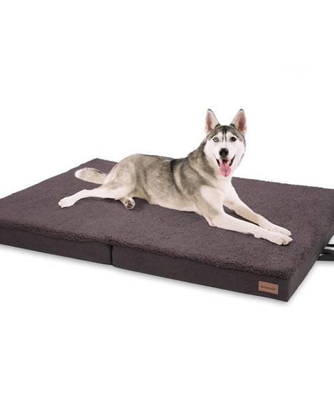 Brunolie Brunolie Paco, pelech pre psa, vankúš pre psa, možnosť prania, ortopedický, protišmykový, priedušný, skladacia pamäťová pena, veľkosť XL (120 × 10 × 85 cm)