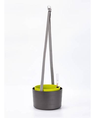 Plastia Samozavlažovací závesný kvetináč Berberis antracit + zelená, pr. 30 cm