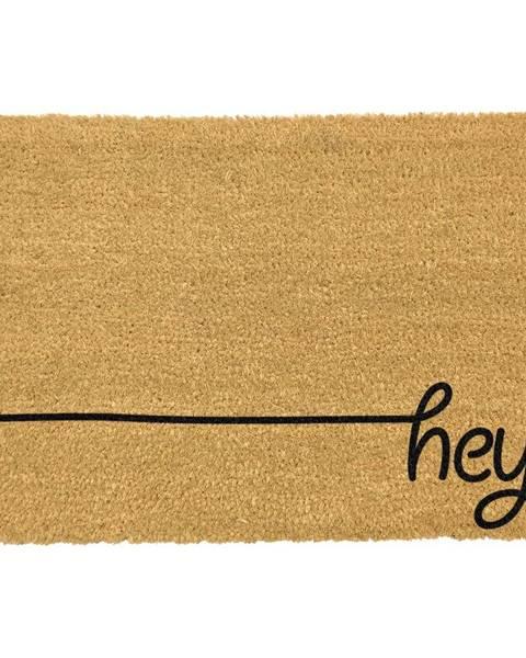 Artsy Doormats Čierna rohožka z prírodného kokosového vlákna Artsy Doormats Hey Scribble, 40 x 60 cm
