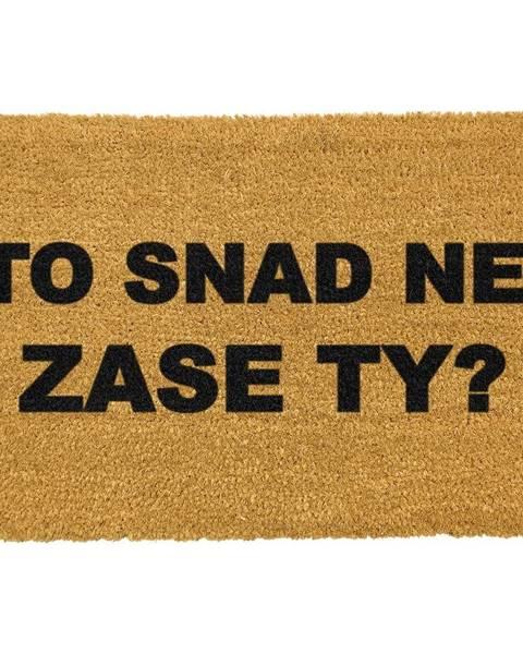 Artsy Doormats Rohožka z prírodného kokosového vlákna Artsy Doormats Zase ty?, 40 x 60 cm