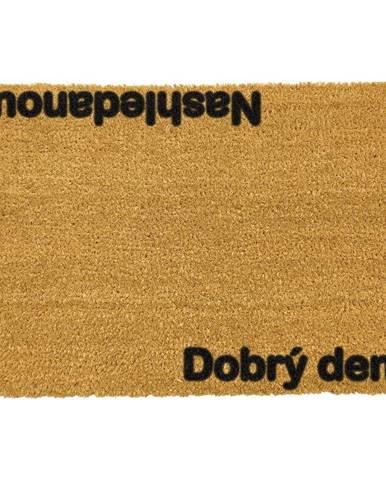 Rohožka z prírodného kokosového vlákna Artsy Doormats Nashledanou, 40 x 60 cm